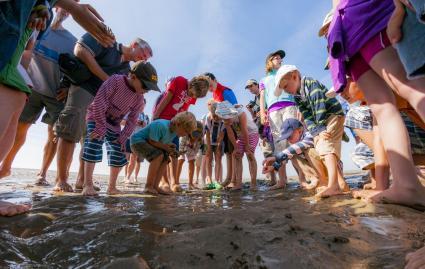 Kinder-Uni-Foehr-2015-Entspannte-Urlaubsatmosphaere-statt-Hoersaal-Erstmals-waehrend-des-bundesweiten-Sommerferienkorridors